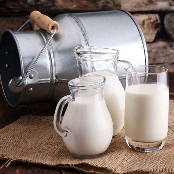 Dairy plus Alternative Dairy Products